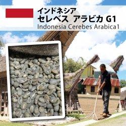 インドネシア セレベス アラビカ G1(Indonesia Celebes Arabica G1 )