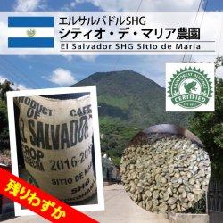 【残りわずか】エルサルバドル SHG シティオ・デ・マリア農園(El Salvador SHG Sitio de Maria)