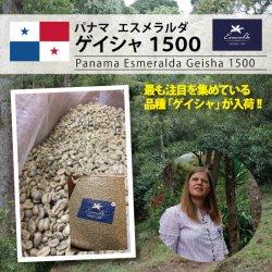 【復活!!】パナマ エスメラルダ農園 ゲイシャ 1500(Panama Esmeralda Geisha 1500)