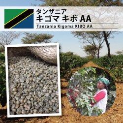 タンザニア キゴマ KIBO AA(Tanzania Kigoma KIBO AA)