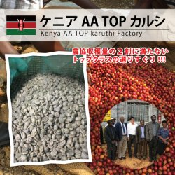 【残りわずか】ケニア AA TOP カルシ(Kenya AA TOP Karuthi Factory)