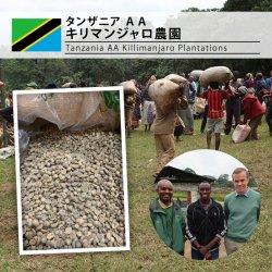 タンザニア AA キリマンジャロ農園(Tanzania AA Killimanjaro Plantations)