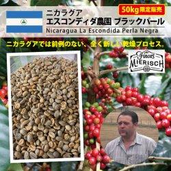 <img class='new_mark_img1' src='https://img.shop-pro.jp/img/new/icons14.gif' style='border:none;display:inline;margin:0px;padding:0px;width:auto;' />[完売御礼] ニカラグア エスコンティダ農園 ブラックパール (Nicaragua La Escondida Perla Negra)