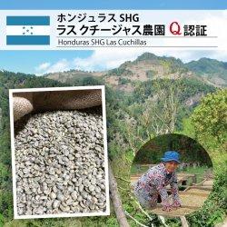 ホンジュラス SHG セレクトマウンテン Q認証(Honduras SHG Select Mt.)