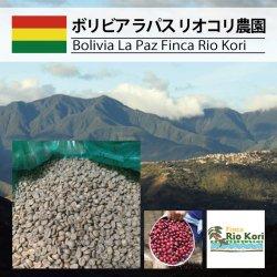 【50kg限定】ボリビア ラパス リオコリ農園(Bolivia La Paz Finca Rio Kori)