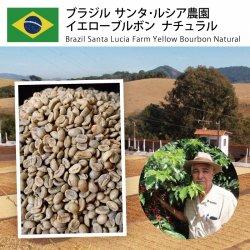 ブラジル サンタ・ルシア農園 イエローブルボン ナチュラル(Brazil Santa Lusia Yellow Bourbon Natural)