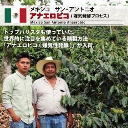 メキシコ サン・アントニオ アナエロビコ(Mexico San Antonio Anaerobic)