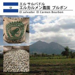 【3月特売】エル サルバドル エル・カルメン農園  ブルボン(El salvador  El Carmen Bourbon)