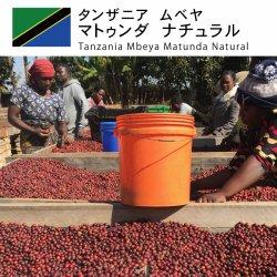 タンザニア ムベヤ マトゥンダ ナチュラル(Tanzania Mbeya Matunda Natural)