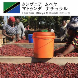 <img class='new_mark_img1' src='https://img.shop-pro.jp/img/new/icons14.gif' style='border:none;display:inline;margin:0px;padding:0px;width:auto;' />タンザニア ムベヤ マトゥンダ ナチュラル(Tanzania Mbeya Matunda Natural)
