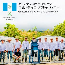 [完売御礼]グアテマラ  エル・チョロ パチェ ハニー(Guatemala El Chorro Pache Honey)
