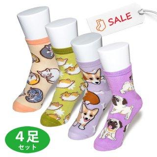 パグ・コーギー・ハムスター・猫 ソックス 4足セット「SALE!」送料無料