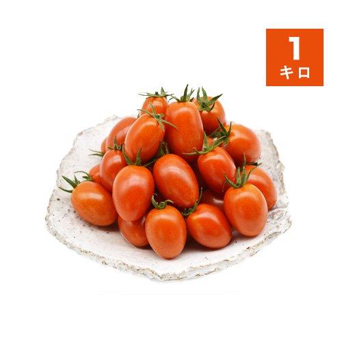 農薬不使用ミニトマト(アイコ)<br>1kg【送料込】<br>