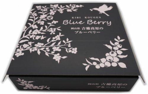 箱入りブルーベリー(生食用)<br>100g×4p<br>