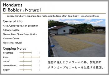 ホンジュラス -natural-<br>中煎り<br>エル・ロブラル農園(100g)<br> <br>チョコ・リキュール・日本茶<br> <br>ミルクとの相性が良い