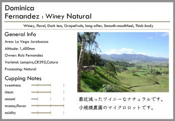 ドミニカ -natural-<br> 浅煎り<br>フェルナンデス(100g)<br> <br>葡萄・ダークティ・フローラル<br> <br>香り豊かなカカオとベリー感