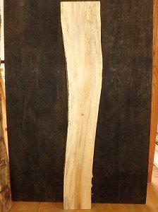 一枚板 栃 天板 ブルーステイン フケ スポルテッド B品
