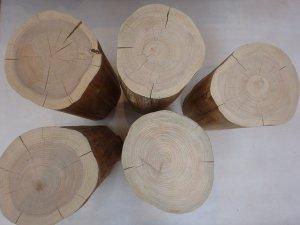 ヒノキ 切り株 無垢 丸太 木材 材木