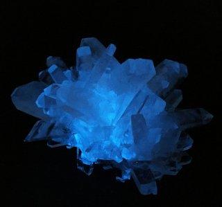 夜光結晶育成キット