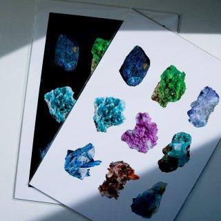LILJEBERGS 博物写真【鉱物】