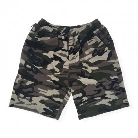 <img class='new_mark_img1' src='https://img.shop-pro.jp/img/new/icons32.gif' style='border:none;display:inline;margin:0px;padding:0px;width:auto;' />W-BASE x FAKIE/STANCE CAMO SHORT PANTS CAMO
