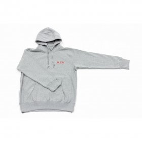 <img class='new_mark_img1' src='https://img.shop-pro.jp/img/new/icons5.gif' style='border:none;display:inline;margin:0px;padding:0px;width:auto;' />*ALIVE INDUSTRY - ICON HOODIE - GREY