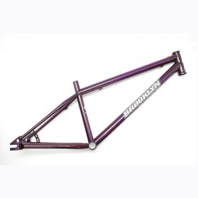 BROOKLYN MACHINE WORKS  NEW PARK FRAME  CANDY PURPLE