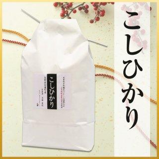 【ギフト米】斉藤さんの金賞米信濃町コシヒカリ5kg
