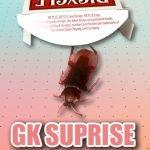 ジーケーサプライズ byひぐぽん (GK SURPRISE)