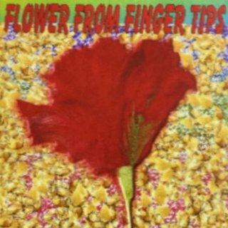指先から出現する赤いバラ (フラワー・フロム・フィンガーチップ)
