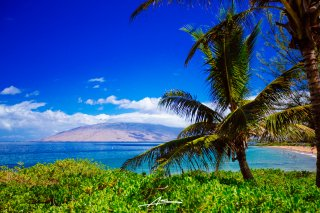 Kihei Beautiful Day  / Kamaole, Maui,Hawaii