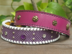 紫系の首輪