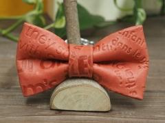 〈小型犬用〉蝶ネクタイのハーフチョーク