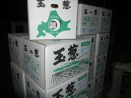 玉葱ひとすじ。中島農園