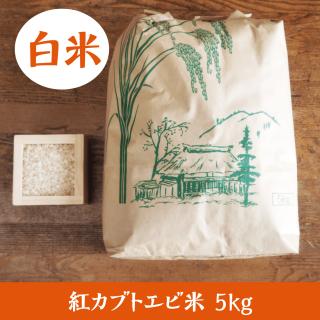 紅カブトエビ米 5kg(白米)