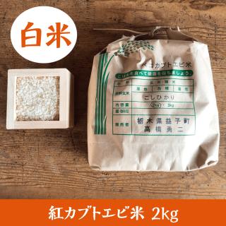 紅カブトエビ米 2kg(白米)