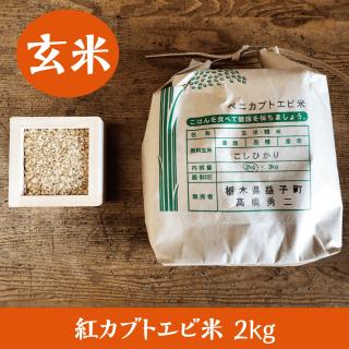 紅カブトエビ米 2kg(玄米)