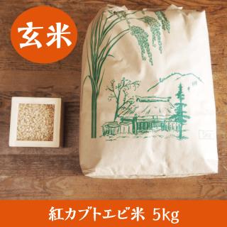 紅カブトエビ米 5kg(玄米)