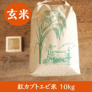 紅カブトエビ米 10kg(玄米)