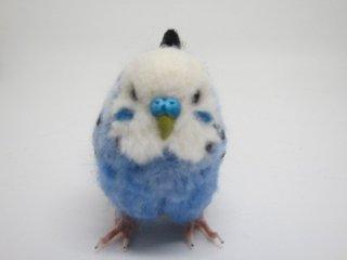 羊毛フェルト リアルで可愛いセキセイインコ 鳥 ゆこりん工房