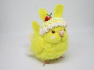 新作 激カワ(*´▽`*)ウサギ帽子セキセイインコ中雛ちゃん ルチノー 鳥 ゆこりん工房