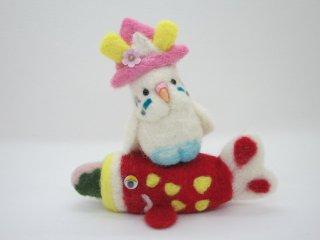 季節限定 セキセイインコで祝うこどもの日 ハルクイン水色 鳥 ゆこりん工房