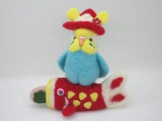 季節限定 セキセイインコで祝うこどもの日 イエローフェイス水色 鳥 ゆこりん工房