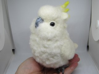 手のひらサイズのぽっちゃり可愛いコバタン 羊毛フェルト 鳥 オウム ゆこりん工房