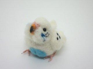 新作 羊毛フェルト リア可愛い!セキセイインコの中雛 ハルクイン水色 鳥 ゆこりん工房