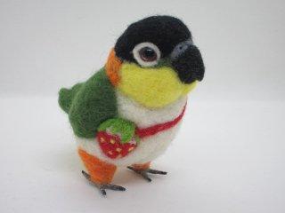 手のひらサイズ 羊毛フェルト可愛いズグロシロハラインコ 鳥 ゆこりん工房