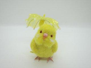 新作 梅雨 傘と可愛いセキセイインコ♪ルチノー 黒目変更可 鳥 ゆこりん工房