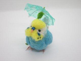 新作 梅雨 傘と可愛いセキセイインコ♪イエローフェイス水色 鳥 ゆこりん工房