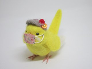 新作 コロナ対策マスク着用セキセイインコ マスク取り外し可 鳥 ルチノ 赤目変更可 ゆこりん工房
