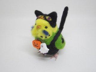 新作 ハロウィン限定 黒猫着ぐるみセキセイインコ 黄緑 鼻茶色 鳥 ゆこりん工房